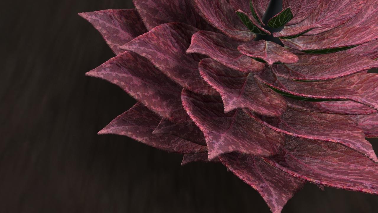 Flower_dark